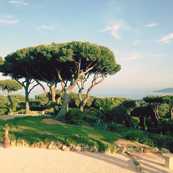 Pic 1 - St. Tropez