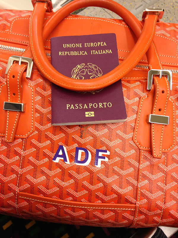 Pic 3 - Goyard luggage